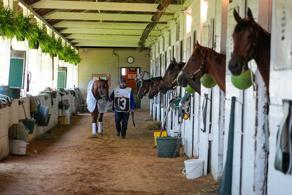 Brian Klatsky and Hidden Stash walking in horse barn with other horses